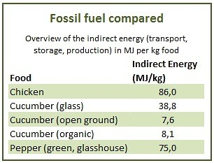 fossil fuel compared english